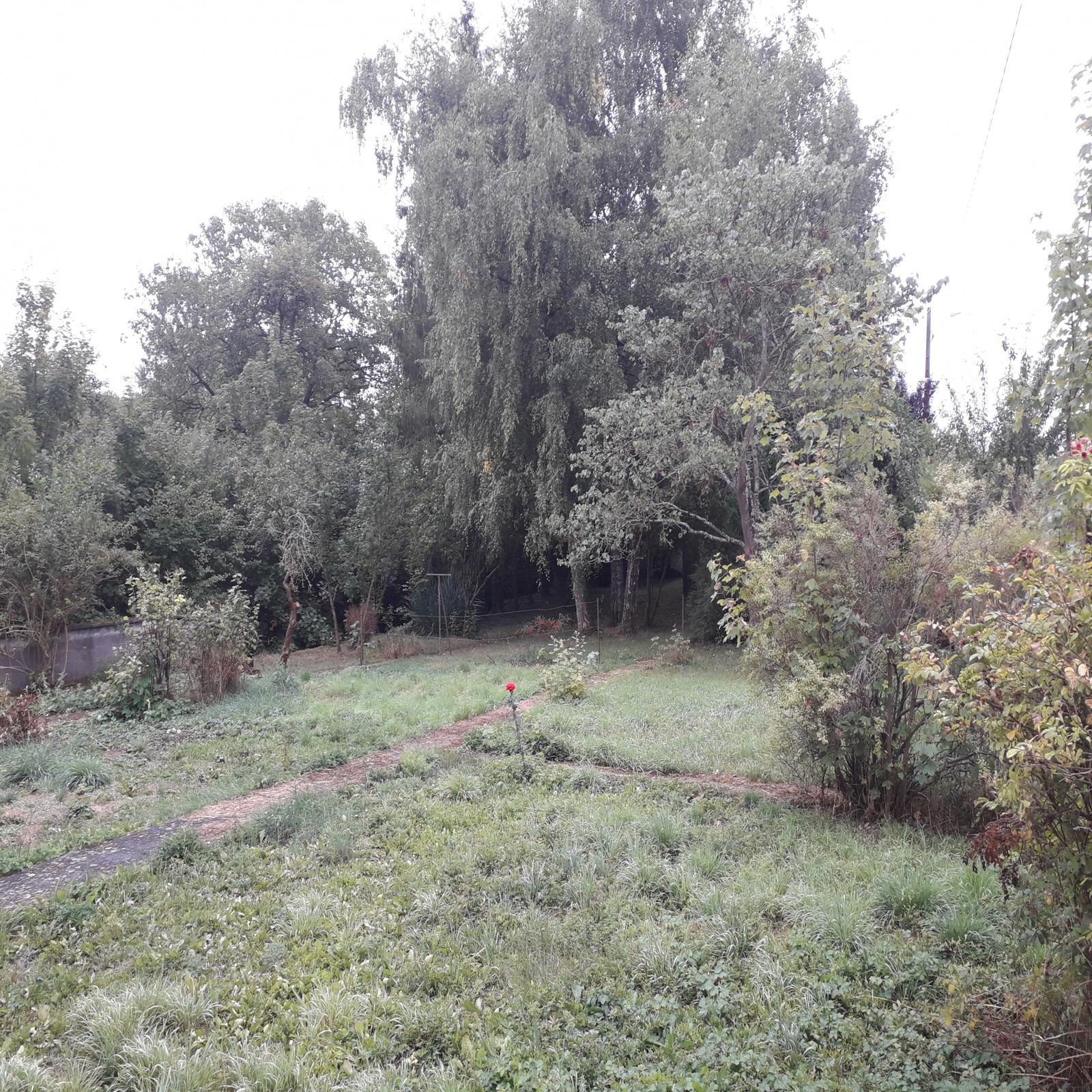 Image_, Maison, Avricourt, ref :3373