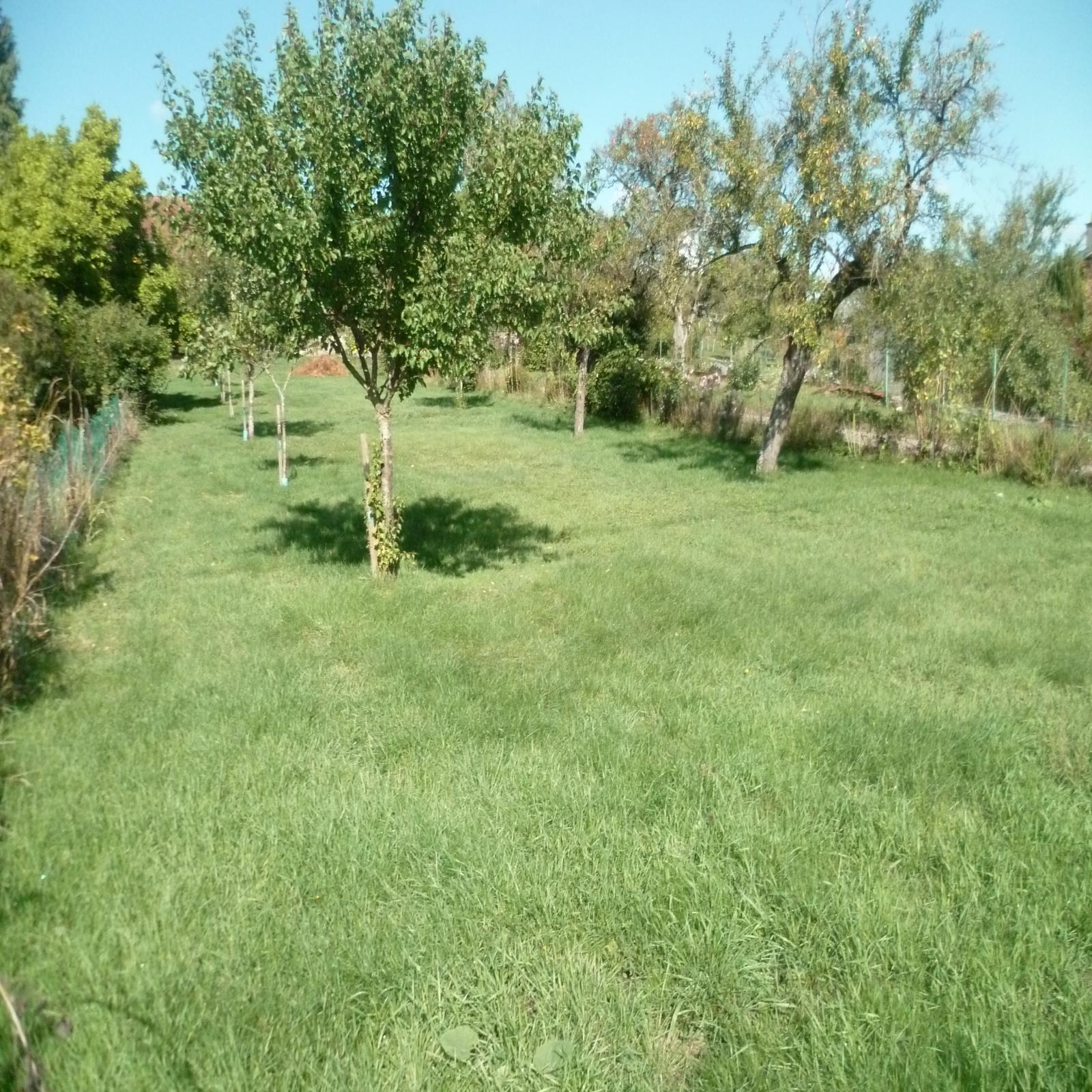 Image_, Terrain, Flainval, ref :3389 bis