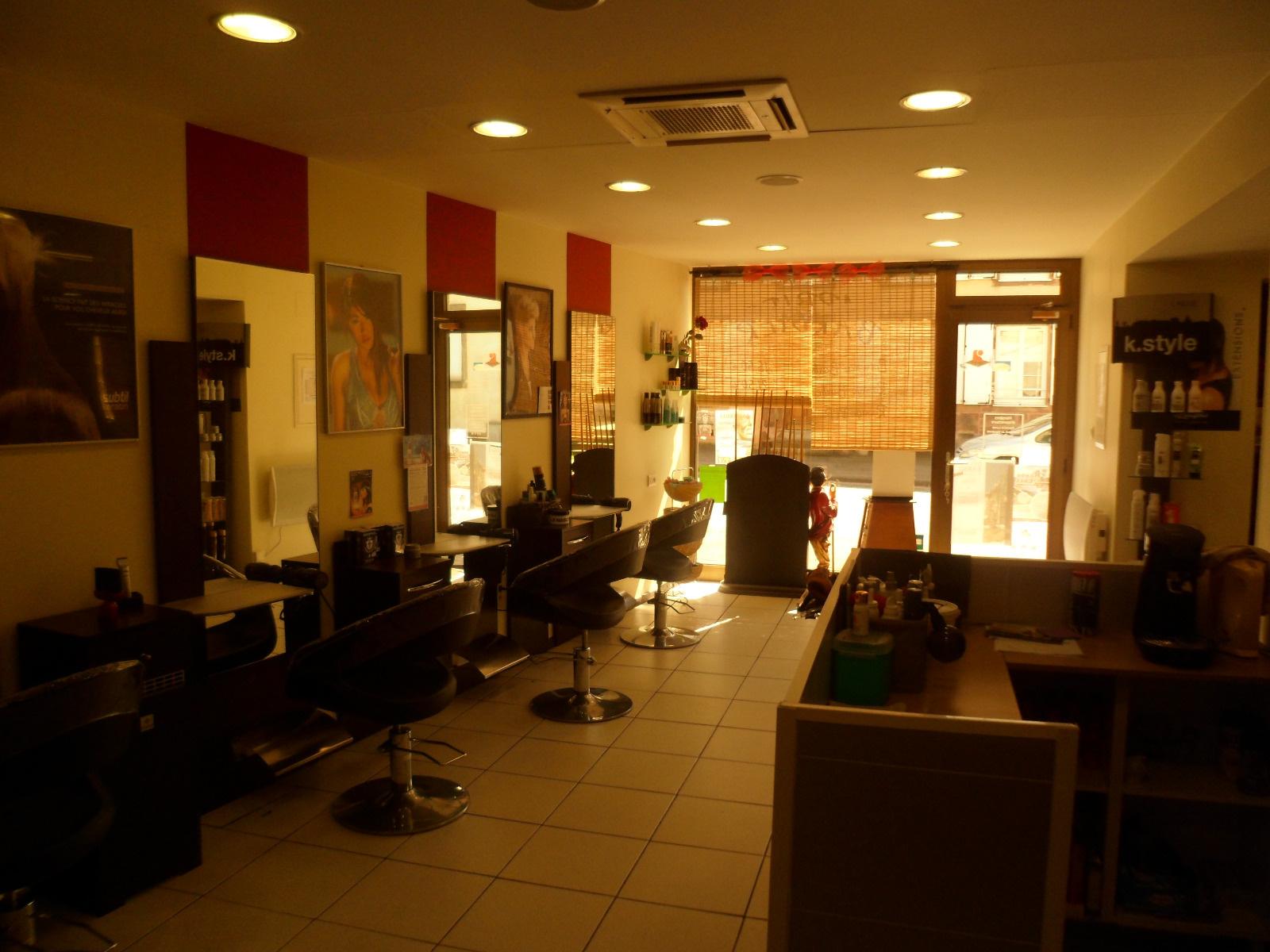 Vente maison individuelle badonviller y compris salon de for Salon de coiffure qui recherche apprenti